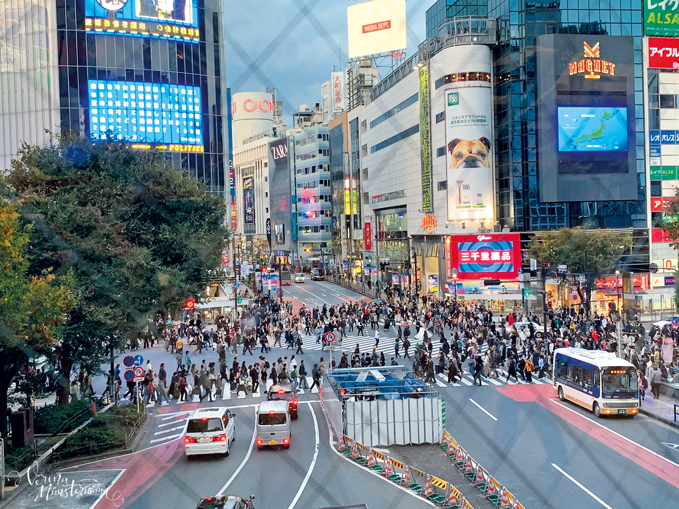 shibuya crossing - nach-Japan-reisen - tokio - verenamuenstermann